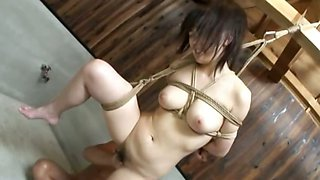 extra hot chinese bondage