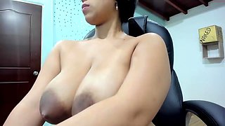 Chocolate Chip LEAKY Areolas